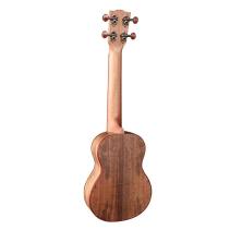 """Bass Amplifier, 75W, 12"""""""